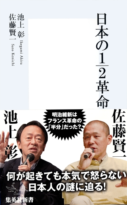 日本の1/2革命拡大写真