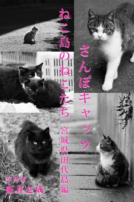 さんぽキャッツ ねこ島のねこたち 宮城県田代島編拡大写真