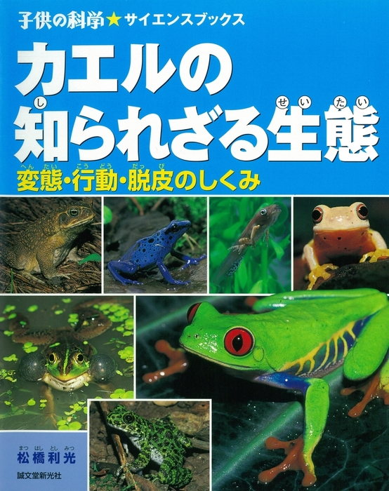 カエルの知られざる生態拡大写真