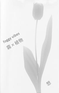 foggy vibes 霧×植物