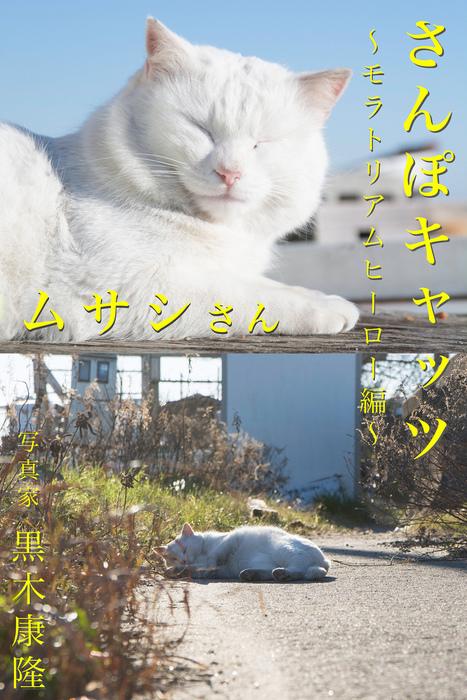 さんぽキャッツ ムサシさん ~モラトリアムヒーロー編~拡大写真