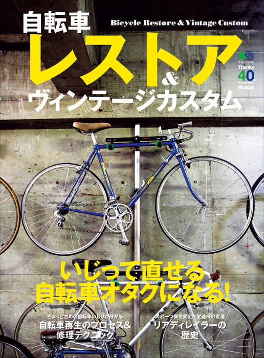 自転車レストア&ヴィンテージカスタム拡大写真
