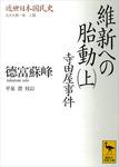 近世日本国民史 維新への胎動(上) 寺田屋事件 文久大勢一変 上篇-電子書籍