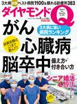ダイヤモンドQ 創刊準備3号-電子書籍