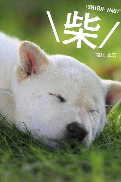 \柴/ SHIBA-INU-電子書籍