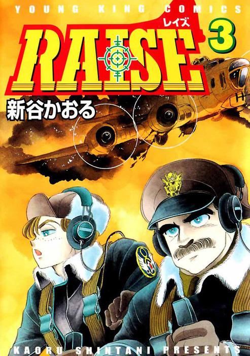 RAISE / 3拡大写真