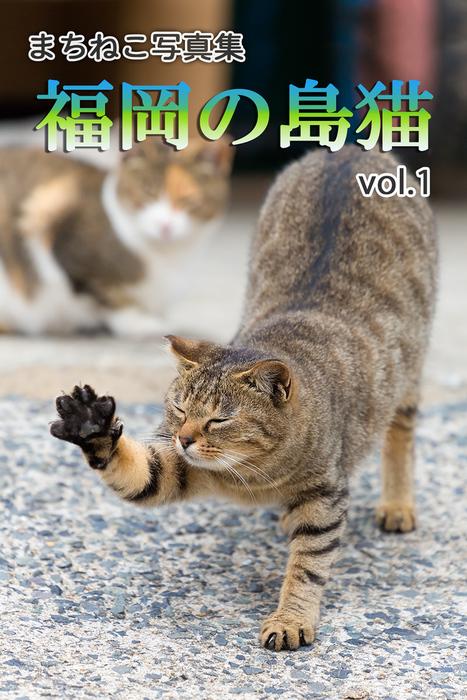 まちねこ写真集・福岡の島猫 vol.1拡大写真