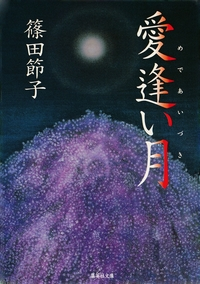 愛逢い月-電子書籍