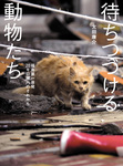 待ちつづける動物たち――福島第一原発20キロ圏内のそれから-電子書籍