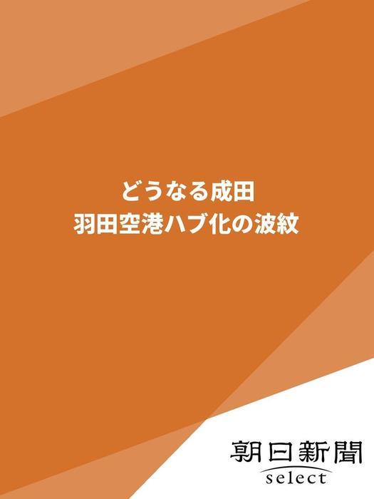 どうなる成田 羽田空港ハブ化の波紋-電子書籍-拡大画像