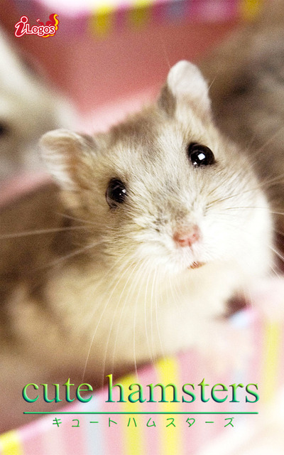 cute hamsters01 ジャンガリアンハムスター-電子書籍