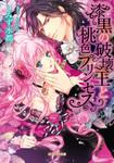 漆黒の破壊王と桃色プリンセス-電子書籍