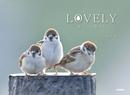 LOVELY 愛らしい鳥たち-電子書籍