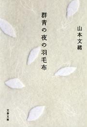 群青の夜の羽毛布拡大写真