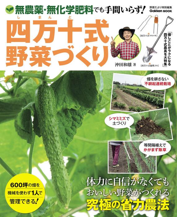 四万十式野菜づくり 無農薬・無化学肥料でも手間いらず!拡大写真