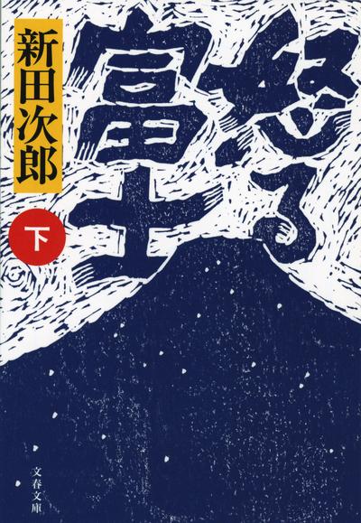 怒る富士 下-電子書籍