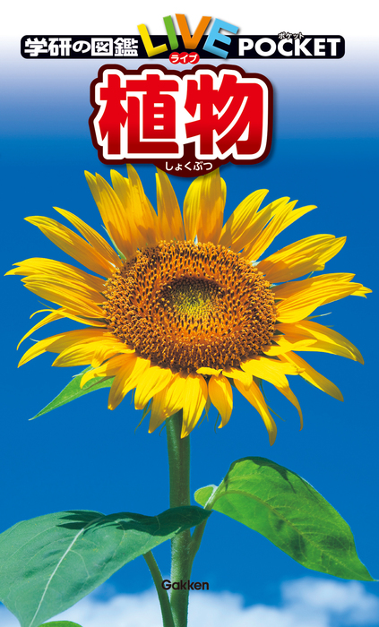植物-電子書籍-拡大画像