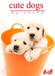 cute dogs19 ゴールデン・レトリバー-電子書籍