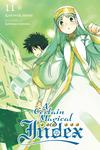 A Certain Magical Index, Vol. 11-電子書籍