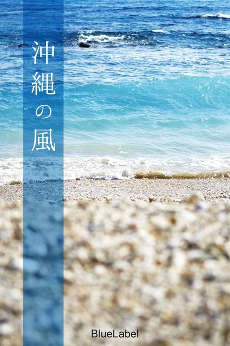 沖縄の風拡大写真