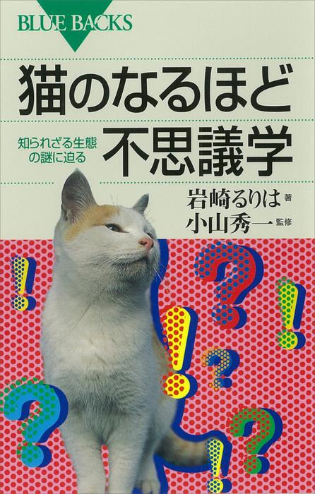 猫のなるほど不思議学 知られざる生態の謎に迫る拡大写真