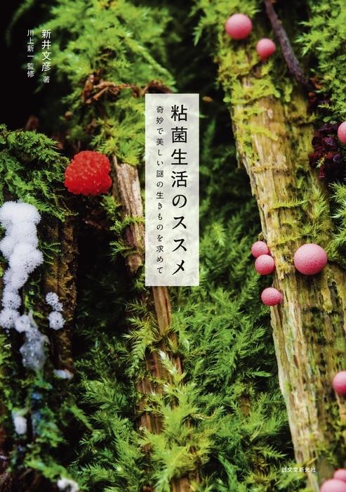 粘菌生活のススメ拡大写真