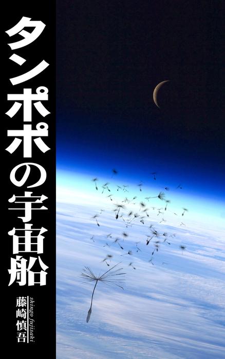 タンポポの宇宙船拡大写真
