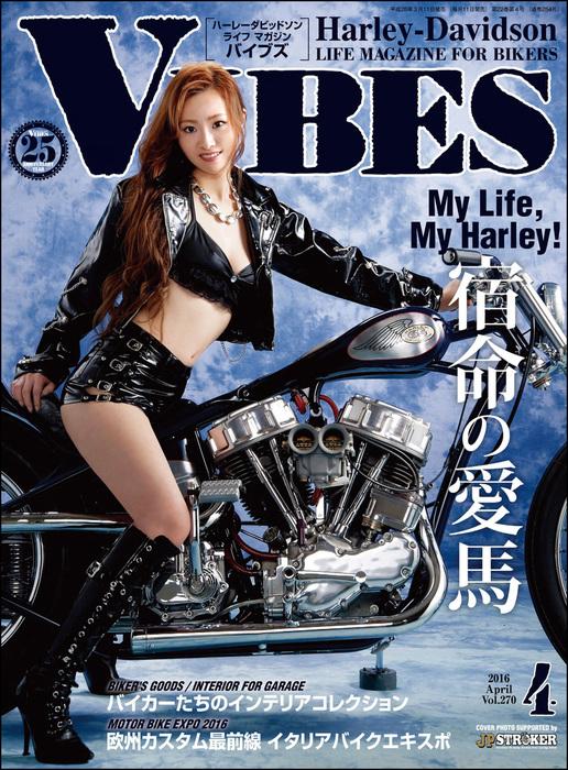 VIBES【バイブズ】2016年4月号拡大写真