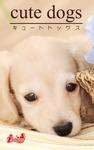 cute dogs27 ダックスフンド-電子書籍