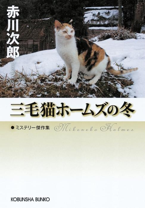 三毛猫ホームズの冬拡大写真