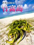 世界の街から・竹富島-電子書籍