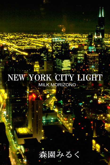NEW YORK CITY LIGHT拡大写真