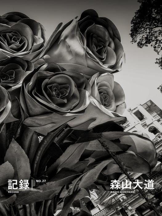 記録27号-電子書籍-拡大画像