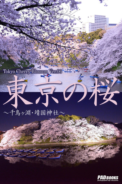 Tokyo Cherry Blossom Ver.06 東京の桜 ~千鳥ヶ淵・靖国神社~拡大写真