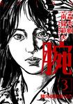 腕 ~駿河城御前試合~ 3巻-電子書籍