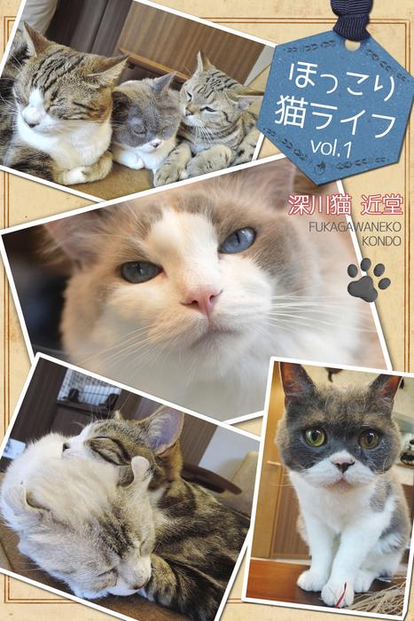 ほっこり猫ライフ vol.1拡大写真