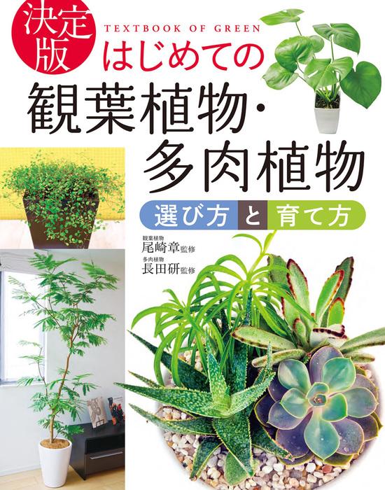 決定版 はじめての観葉植物・多肉植物 選び方と育て方拡大写真