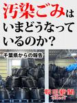 汚染ごみはいまどうなっているのか? 千葉県からの報告-電子書籍