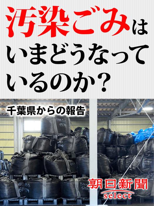 汚染ごみはいまどうなっているのか? 千葉県からの報告拡大写真