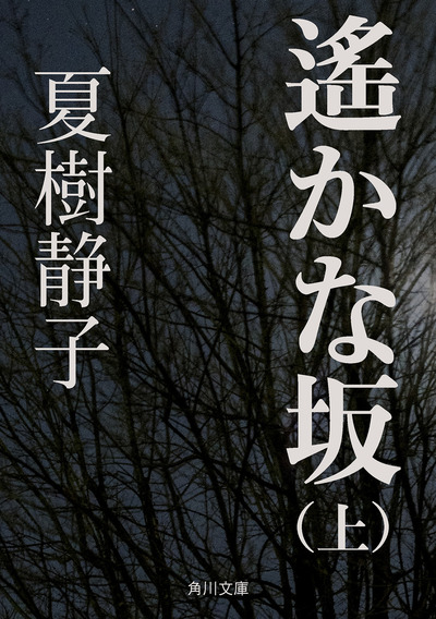 遙かな坂(上)-電子書籍