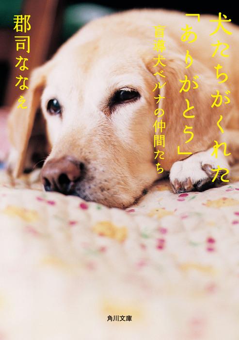 犬たちがくれた「ありがとう」 盲導犬ベルナの仲間たち-電子書籍-拡大画像