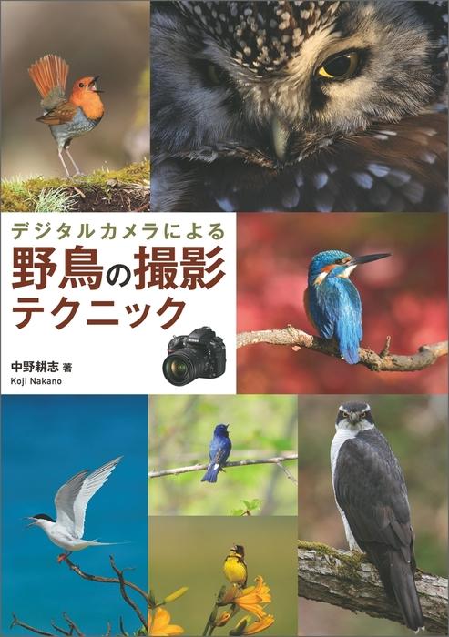デジタルカメラによる 野鳥の撮影テクニック拡大写真