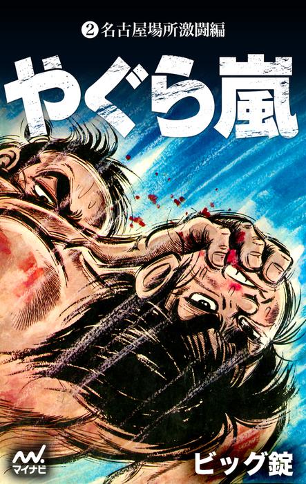 やぐら嵐 第2巻 名古屋場所激闘編-電子書籍-拡大画像