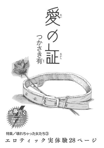 壊れちゃった女たち~愛の証~-電子書籍
