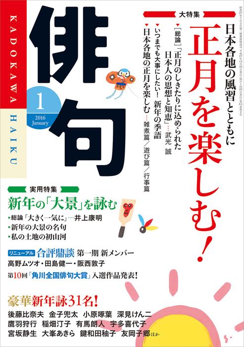 俳句 28年1月号拡大写真