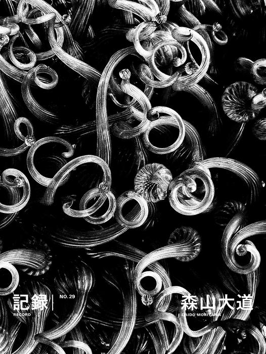 記録29号-電子書籍-拡大画像
