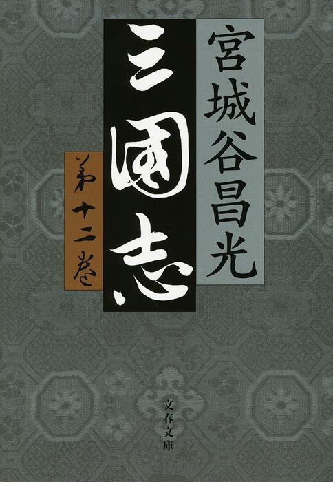 三国志 第十二巻-電子書籍-拡大画像