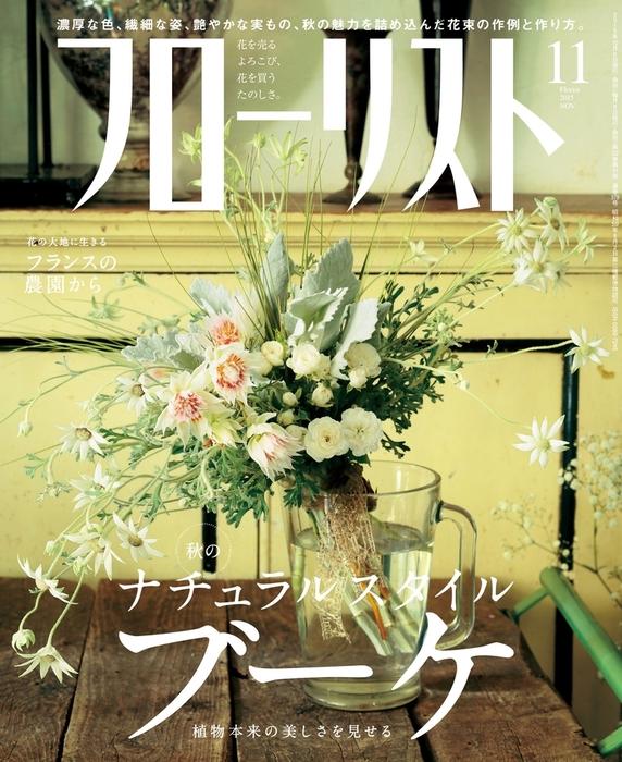 フローリスト2015年11月号-電子書籍-拡大画像