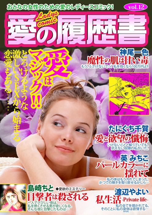 愛の履歴書Vol.12拡大写真