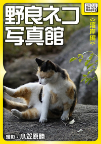 野良ネコ写真館【湾岸編】-電子書籍